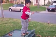 Little kid fails spectacularly at jumping into leaves