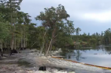 Underwater sinkhole suddenly swallows a dozen trees