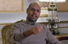 "Gaddafi's son says Libya funded ""clown"" Sarkozy's presidential campaign"