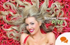 Rosanna Davison: Why I posed naked for a cause I believe in