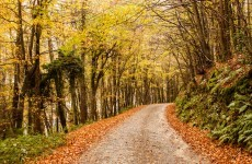 12 reasons to be excited about autumn