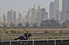 Betting for Dubai World Cup Day