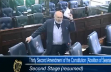 'Fannies', 'prats' and 'clowns': 10 bizarre moments from the 24th Seanad