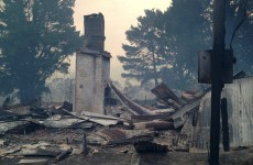 Bushfires cause death and devastation in New South Wales