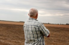 Sharp increase in suicidal farmers calling helpline over financial troubles