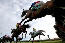 13 of the best pics from today's action at Navan Racecourse