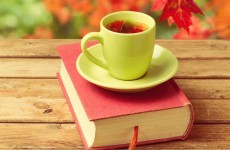 Sitdown Sunday: The 20 deadliest reads of 2013