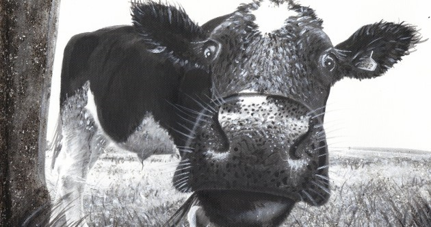 Artist's bovine beauties milking the attention
