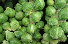 The Burning Question*: Christmas Day Brussels sprouts: yay or nay?