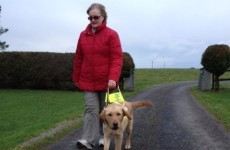 Sligo garda raising funds for guide dog charity after mother's freak accident