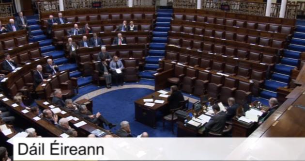WATCH: Fianna Fáil lead Dáil walkout after row over water services legislation