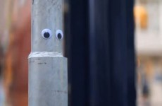 Googly eyes are taking over the world, and we're okay with that