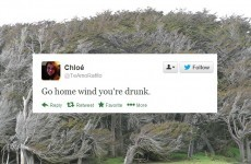 The Irish people of Twitter can't cope with this wind