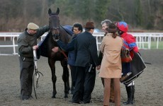 Sprinter Sacre set for heart scans as he's pulled up in Kempton comeback