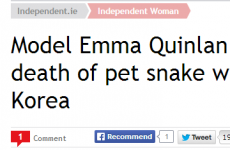 Stop! 2013 has a last-minute winner for 'weirdest Irish headline'