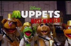 New Muppets trailer takes the p*ss out of tweets about the film