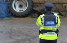 Attempted abduction of parents and young child in Co Kildare foiled