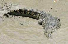 Crocodile snatches 12-year-old boy in Australia