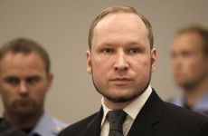 Brevik wants to hunger strike for better video games