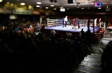 10 titles on the line as Ireland's top boxers meet in the National Championship Finals