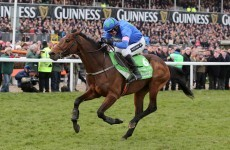 Confused by Cheltenham? Here's how you can bluff your way through this year's festival