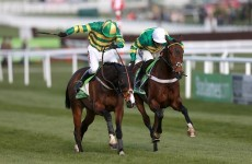 Jezki wins Champion Hurdle but tragedy strikes for Our Conor