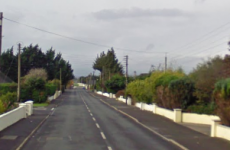 Paramedic dies after 4x4 crashes into pole in Laois