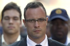 Pistorius ordered six new guns before girlfriend's death