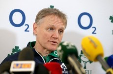 Ferris, Ryan and Bowe in Schmidt's thoughts as World Cup planning begins
