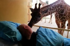 Terminally ill zookeeper pays last visit to his animals