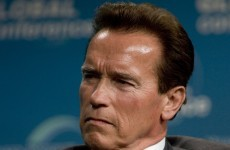Not quite 'Twins' but Schwarzenegger's two sons were born within days of each other