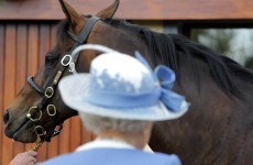 Hopes of Queen's visit to Curragh dashed by Palace