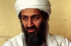 No evidence of imminent terrorist threat from Bin Laden before death: Officials
