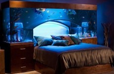 11 beds that are indefinitely better than yours