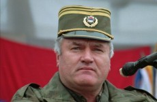 Mladic spends his first night in The Hague in solitary confinement