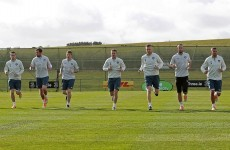 What shape is the Ireland squad in going into the summer friendlies?