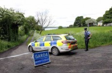 Gardaí appeal for information on two bodies discovered in Meath lake