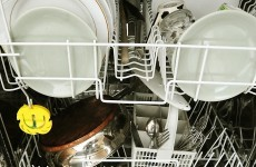 Do you have a Bosch, Siemens or Neff dishwasher made before 2006? You might want to read this