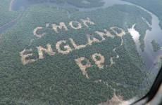 UPDATE: Paddy Power did not cut down a single Amazonian tree