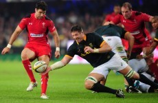 Wales disappoint as Willie le Roux inspires South Africa victory