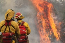 Video, Photos: Arizona wildfires spreading towards New Mexico border