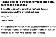 Party-crashing bear inspires greatest headline of the day