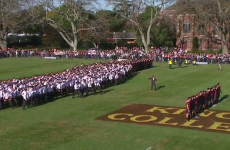 Hundreds of students join in for spine-tingling New Zealand schools haka