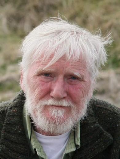 Writer Dermot Healy dies aged 66