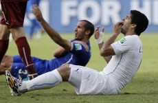 Luis Suarez admits bite and apologises to Giorgio Chiellini