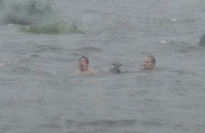 Two men brave floods to save fox cub stranded on a rock