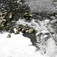 'Definite line of inquiry' being followed into source of Tolka pollution