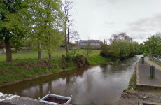 650 fish killed in Limerick slurry spill