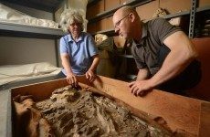 The mystery of the 6,500-year-old skeleton found in a museum basement