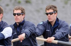 Winklevoss twins give up 'Social Network' legal case